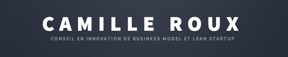 Camille Roux - conseil en business model